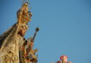 Este viernes vuelve EL CALLEJERO y el domingo, tertulia cofrade sobre las GLORIAS de Chiclana