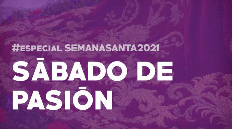 programa el senatus